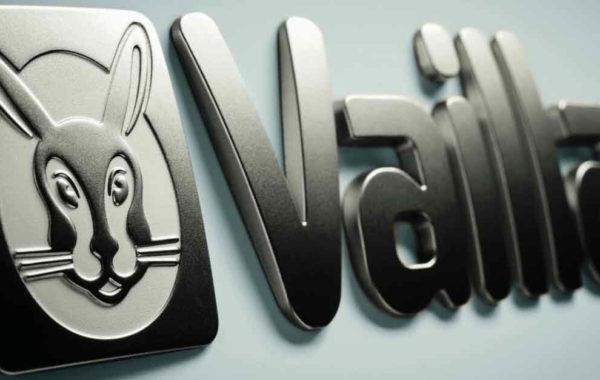 Мы - золотые партнеры Vaillant